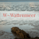 W-Wattenmeer, Ostfriesland- Unesco Welterbe